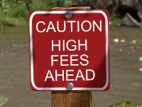high fees for public records